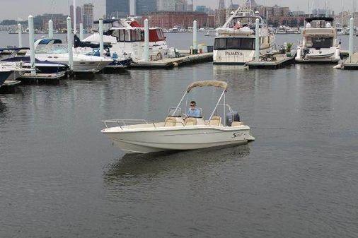 Scout 175 Dorado image