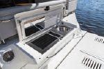 Sea Ray Fly 460image