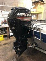 Mercury Fourstroke 115 hp