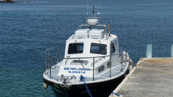 Mitchell 31 Mk1 Sea Angler Mitchell 31 Mk1 Sea Angler