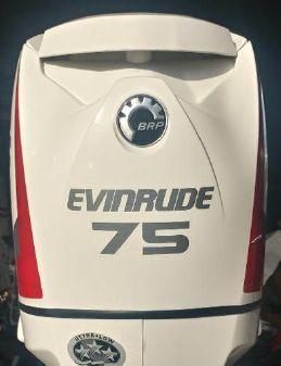 Evinrude E75DSLII image