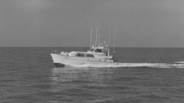 Matthews Classic Yacht Fish