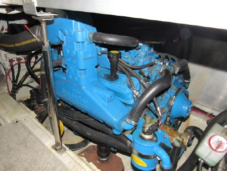 Carver 366 Aft Cabin image