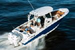 Wellcraft 302 Fishermanimage