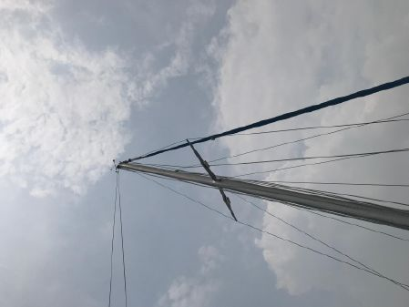Dockrell 37 image