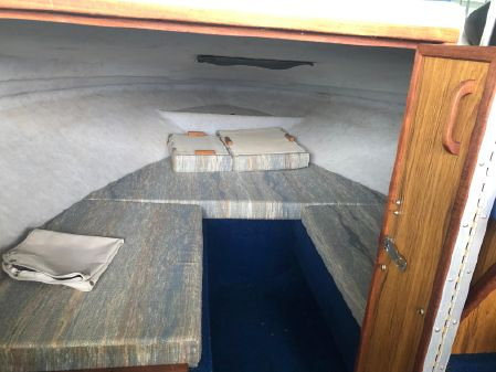 Sea Ray Seville 20 Cuddy Cabin image