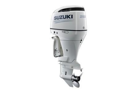 Suzuki DF250 image
