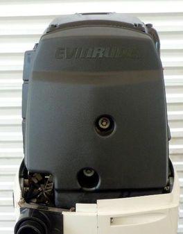 Evinrude  E-TEC 250hp 25