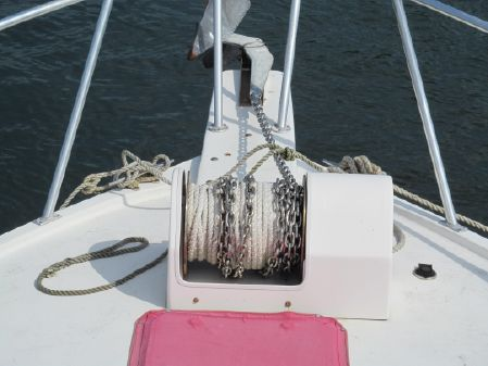 Torres Sportfish image