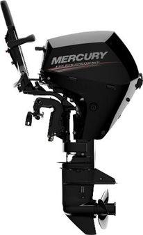 Mercury 20EH EFI image