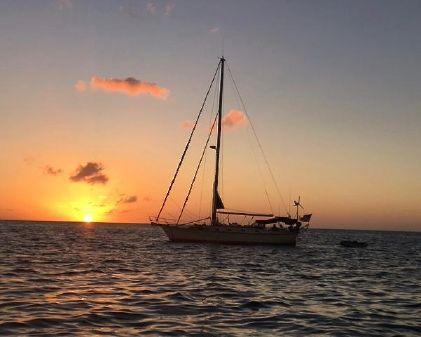 Island Packet 44 image