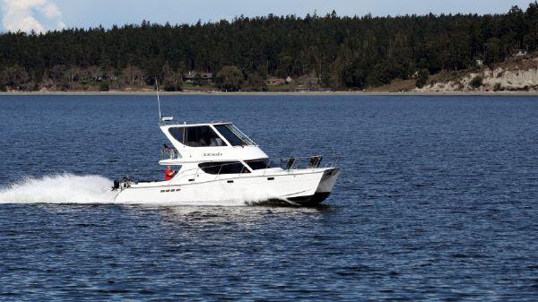 Custom TLD Marine Power Cat 41