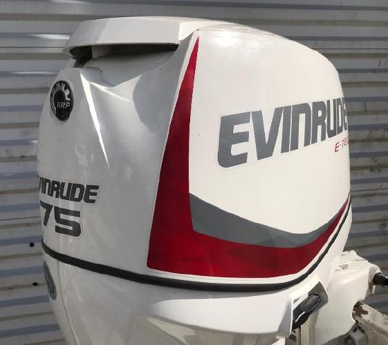 Evinrude E75DSLAF