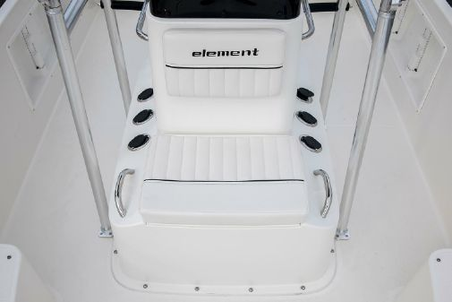 Bayliner Element F21 image
