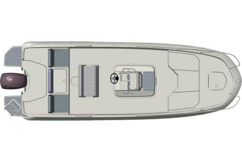Bayliner Element F21 image