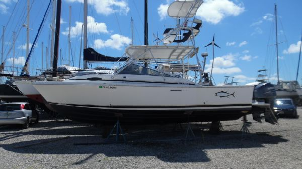 Blackfin 29 Combi