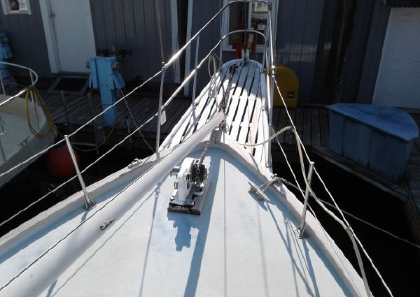 Islander 41 FREEPORT image