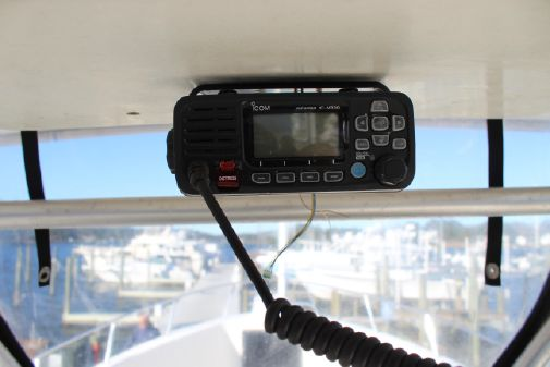 Pro-Line Sport 250 image
