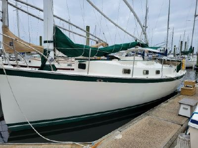 1980 Nonsuch<span>30 Classic</span>