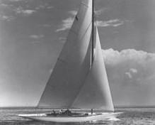 William Fife 8 Meter image
