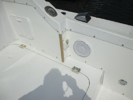 Bertram 28 Flybridge image