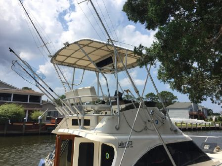 Luhrs Tournament 320 Convertible image