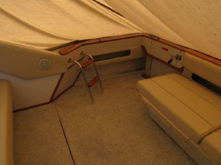 Sea Ray 390 Express Cruiser image