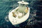 Yellowfin 32image