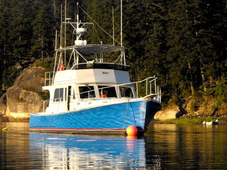 Duffy Downeast Flybridge image