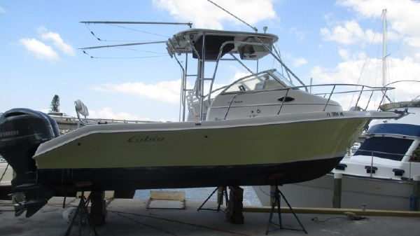 Cobia 250 Walk-Around