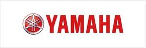 Yamaha F25TLRD