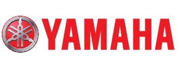 Yamaha VZ250FTLR
