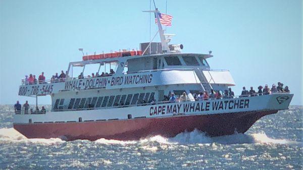 Aluminum boats inc 400 Passenger Whale Watch CUMMINS REPOWER