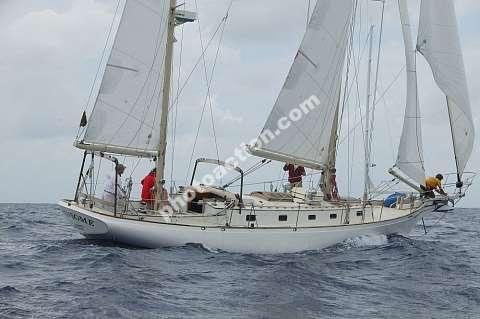 Cherubini 44 image