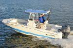 NauticStar 231 Coastalimage