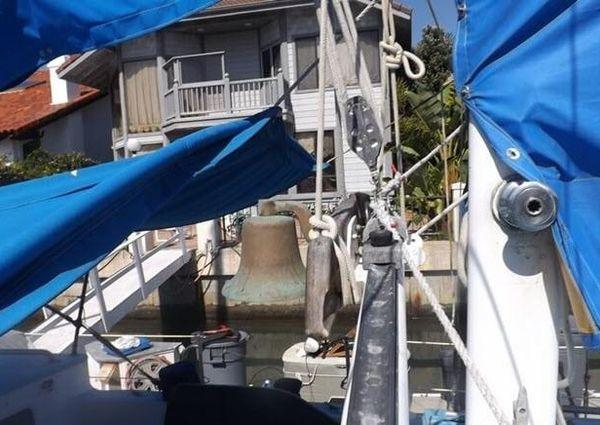 Islander Freeport image