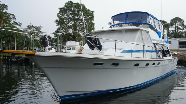Bayliner 4550 Pilothouse
