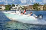 Robalo R222 Explorerimage