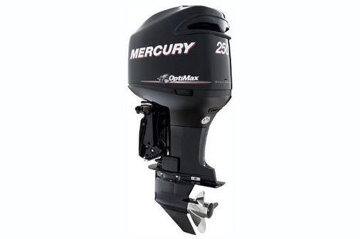 Mercury OptiMax 250 hp image