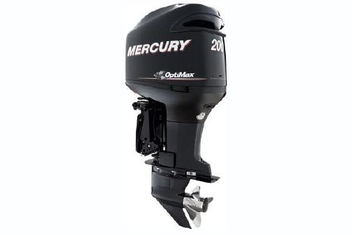 Mercury OptiMax 200 hp image