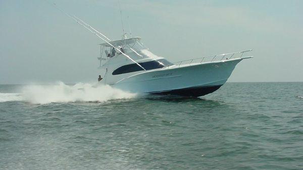 Custom Carolina 55 Convertible Profile