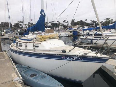 Newport N30 image