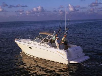 2007 Sea Ray<span>290 Amberjack</span>