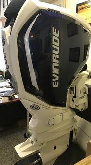 Evinrude C150 image