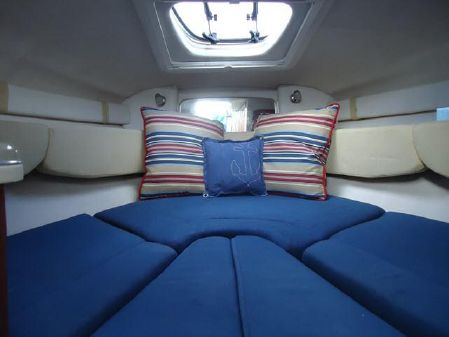 Sea Ray 240 Sundancer image