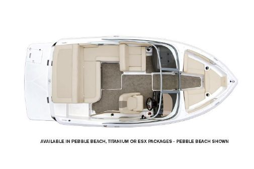 Regal 19 Surf image