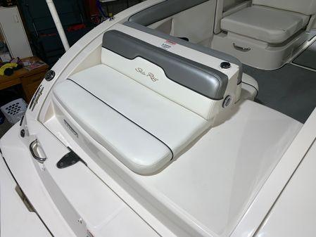 Sea Ray 290 Sundeck image