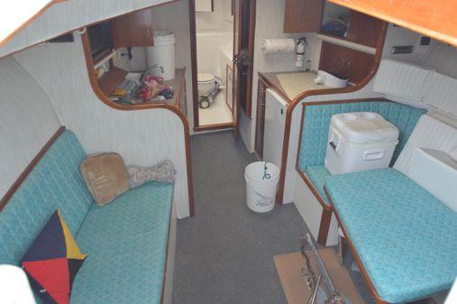 Custom Carolina 39 Express Gary Davis image