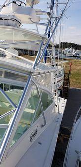 Carolina Classic 35 image