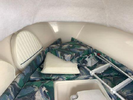 Sea Hunt Victory 225 image